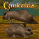 Cuniculus (Murloc RPG Rabbit Version)